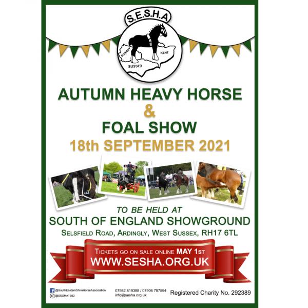 Autumn Heavy Horse & Foal Show